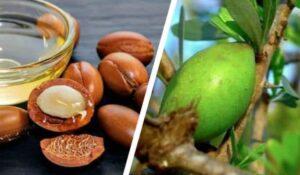 arganpitten en arganvruchten