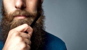 grote en gezonde baard